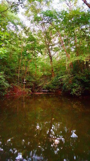 Hidden Cove First Eyeem Photo