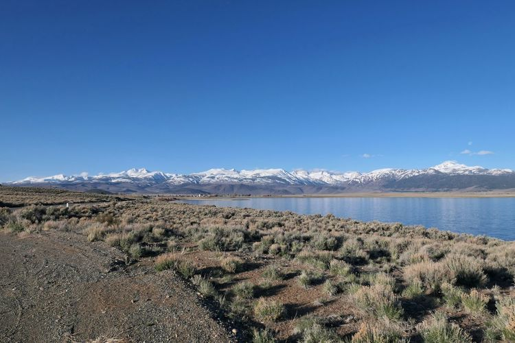 Sky Scenics - Nature Mountain Beauty In Nature Landscape Tranquil Scene Nature Blue Tranquility Day Environment Copy Space Mountain Range Water Land Plant No People Non-urban Scene Clear Sky Outdoors Snow Cold Temperature Sierra Nevada Mono Lake