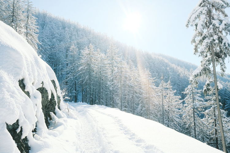 Scenic view of snow covered land against bright sun