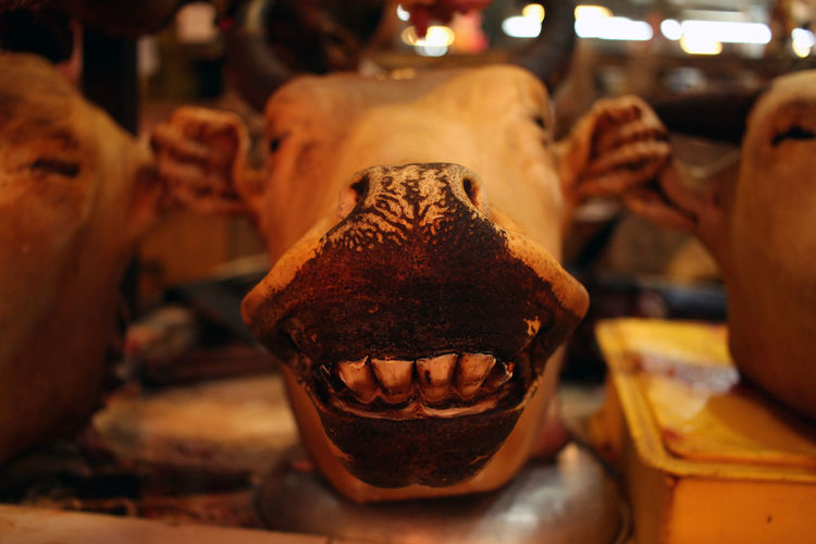 Close-Up Of Cow Head At Butcher Shop For Sale