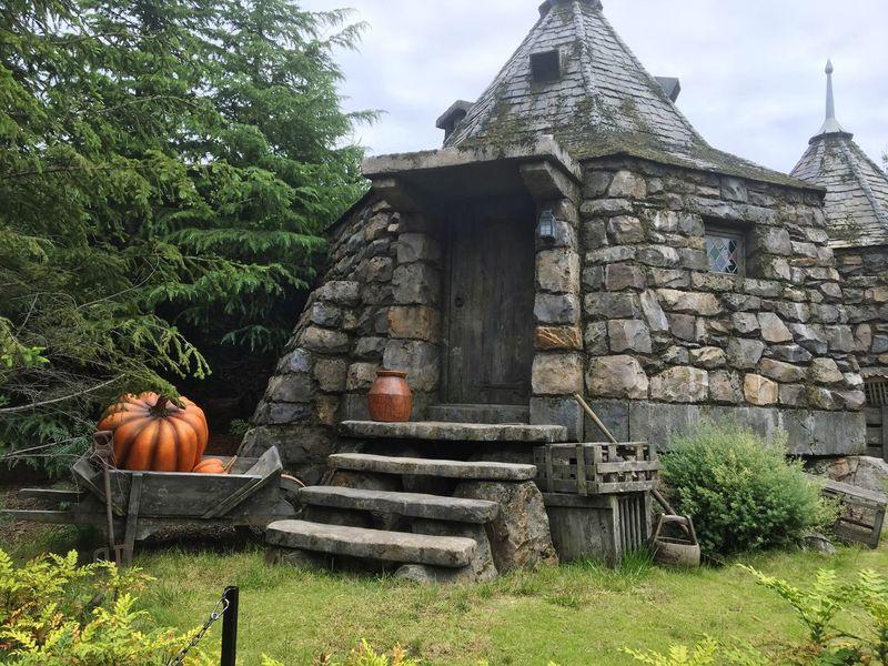 Harrypotter ハグリッド House ハリーポッター ユニバ カボチャ Pumpkin