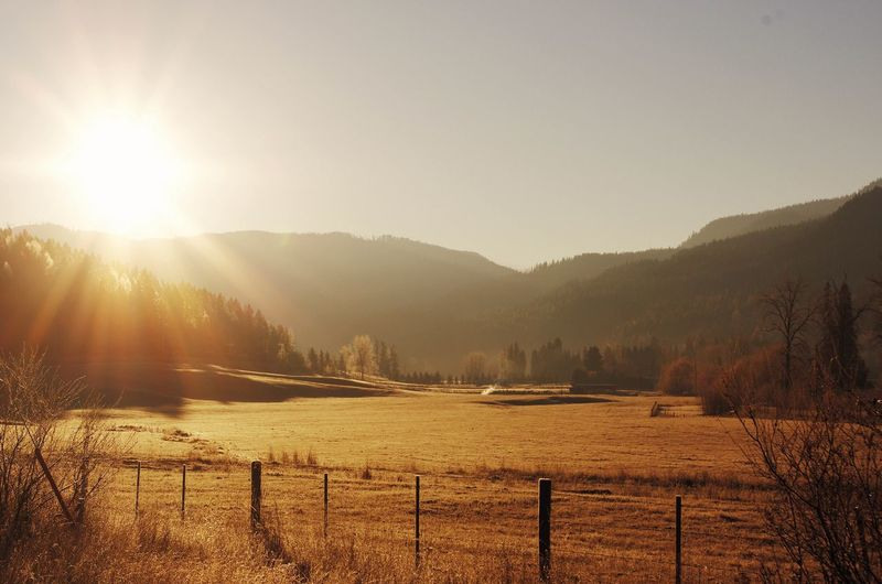 Beauty In Nature Countryside Farm Geology Gold Golden Hour Horizon Over Land Idyllic Lake Landscape Light Majestic Mountain Nature Non Urban Scene Non-urban Scene Outdoors Physical Geography Remote Scenics Sunrise Tranquil Scene Tranquility Tree Valley