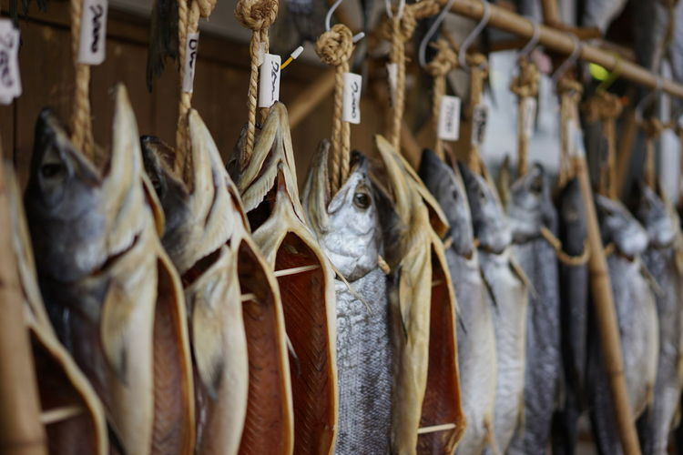 Dry salmons hanging for sale at fish market