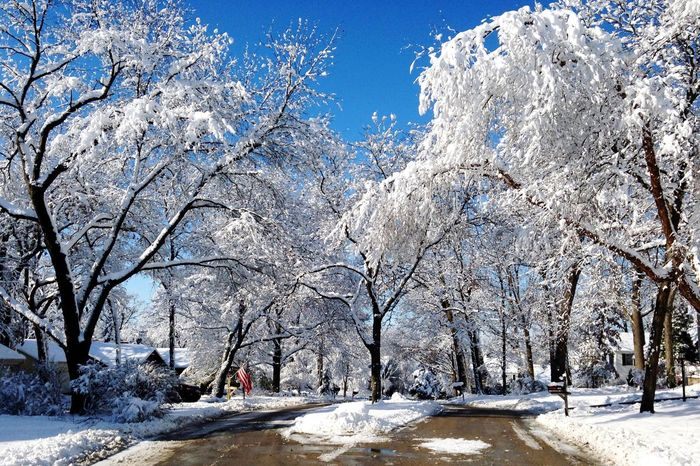 White Snow Season  Street Road Beauty In Nature Winter