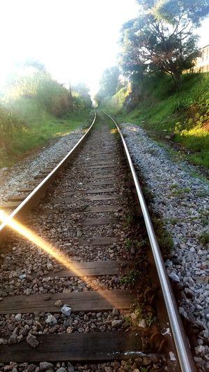 Os primeiros raios de sol no amanhecer... Lines Train Tracks