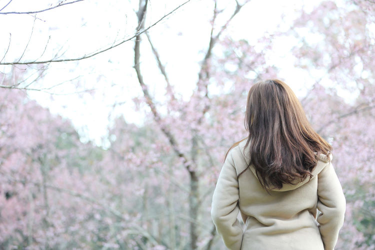 Rear view of young woman standing against cherry tree