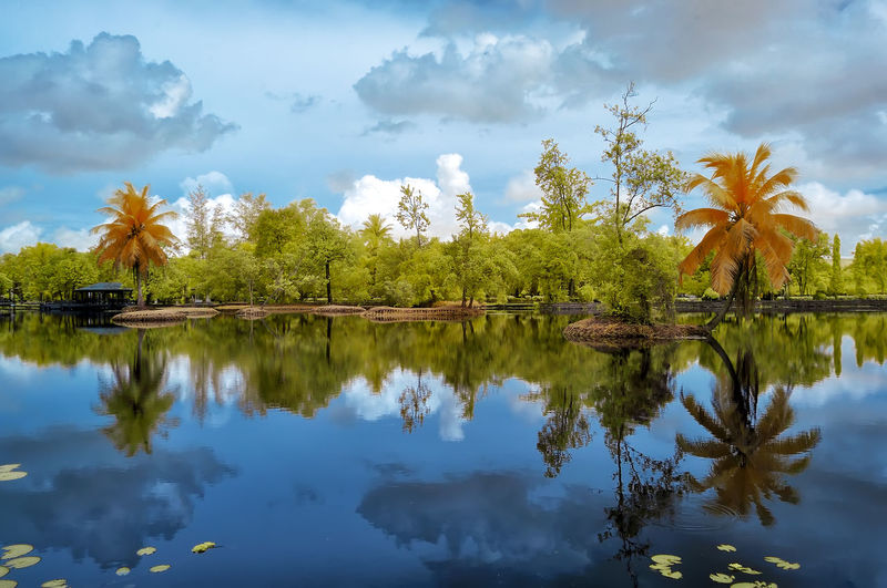 Beautiful and colorful infrared photo of a garden Beauty In Nature Cloud - Sky Day Infrared Photography Lake Nature No People Outdoors Reflection Scenics Sky Tranquility Tree Water