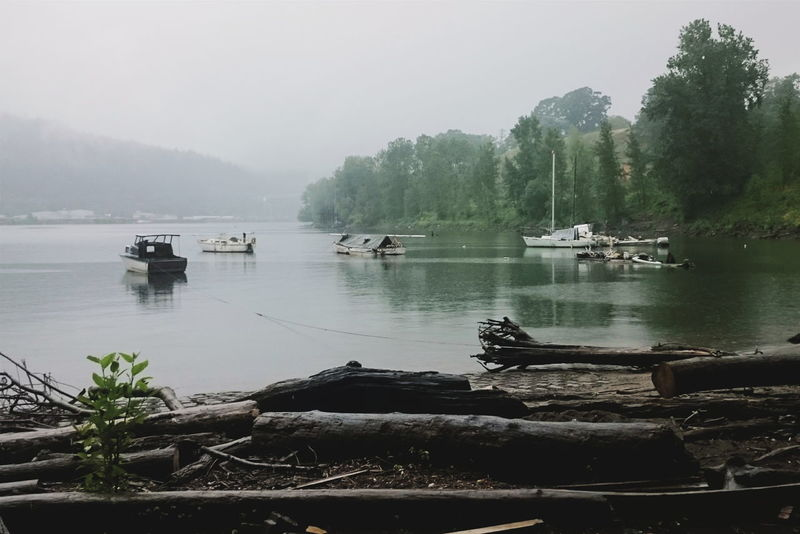 Homeless people living on the water in Willamette Cove. Water Boats Mist Misty Pacific Northwest  Oregon Portland Oregon Portland Willamette River  Willamette Valley North Portland Evergreens River Homelessness  Homeless Human Condition Community