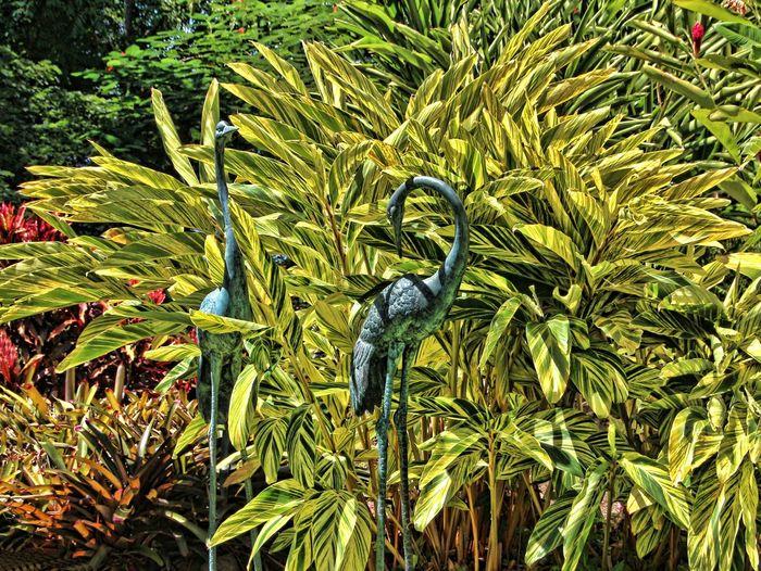 Bird Sculpture Animal Themes Birds Green Color No People Plant