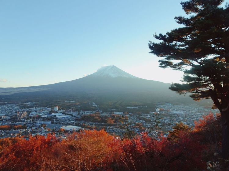 Fall colors all over Fuji Fuji EyeEmNewHere Autumn Autum Colors Fuji Fall Japan Japan Photography Nature Japan Travel Wanderlust Travel Destinations Photography Mountain Autumn Tree No People Outdoors Fog Nature Day Scenics Landscape City Sky Beauty In Nature Cityscape EyeEmNewHere