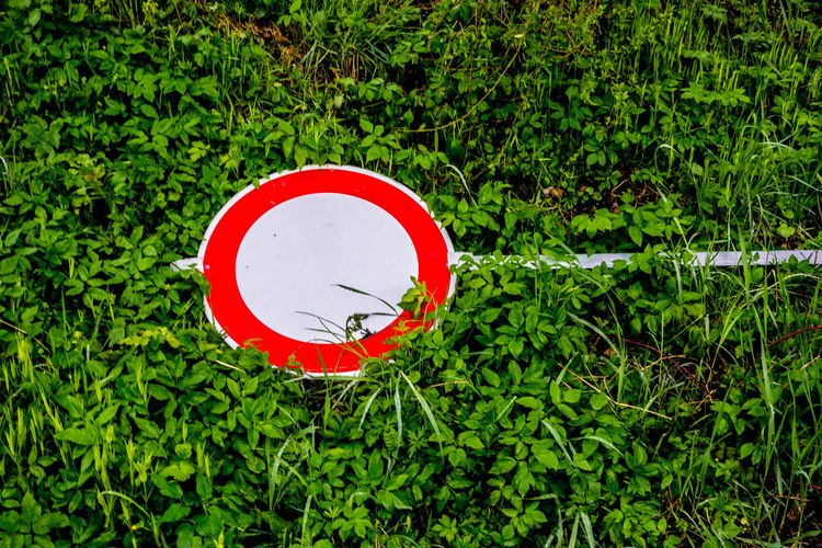 Close-up of road sign against plants