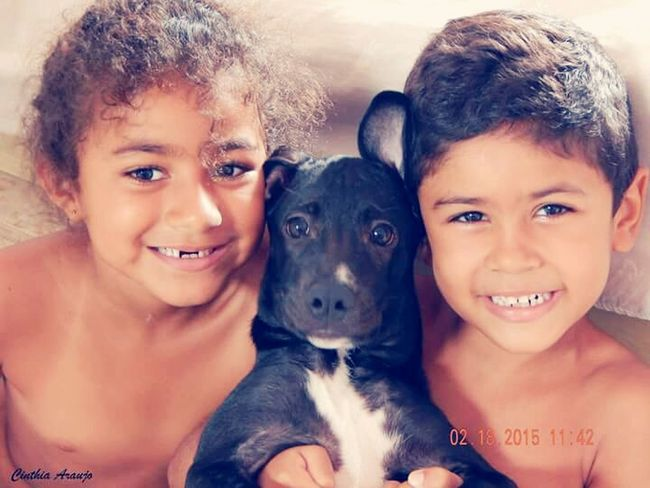 Playing With The Animals My Dog My Lovers ♡ My Children