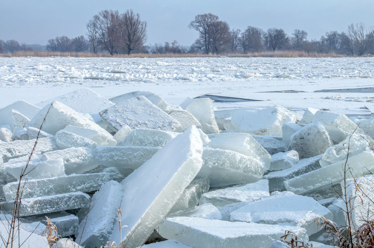 Thick ice floes drift on the river Oder in Germany Ice Cold Cold Temperature Day Environment Field Frozen Frozen Water Ice Ice Drift Ice Floes Land Nature No People Oderbruch Outdoors River River Oder Scenics - Nature Snow Tranquility Tree Water White Color Winter