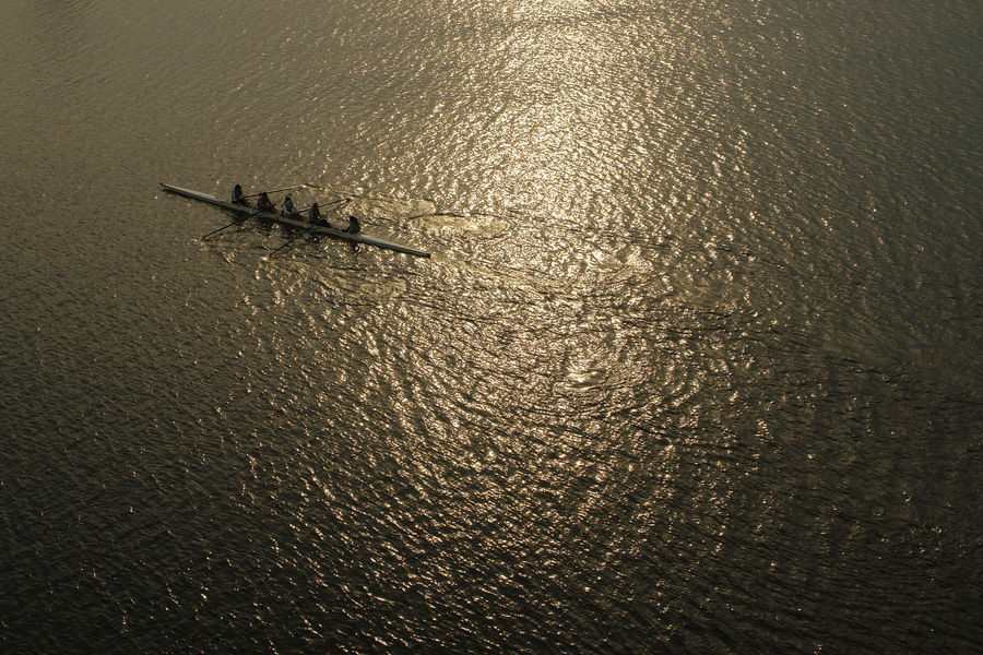 teamwork Beauty In Nature Boat Elevated View Nature Oars Outdoors Rippled Rowing Rowing Boat Scenics Sunset Teamwork Water Water Sports Water Spots The Great Outdoors - 2016 EyeEm Awards SonyR1 43 Golden Moments People Together A Bird's Eye View The Color Of Sport