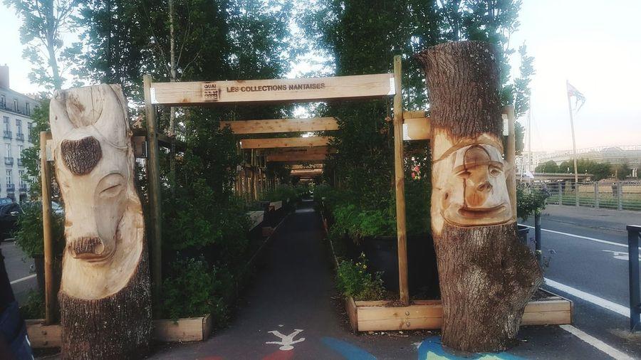 Lumière EyeEm Selects Tourism Architecture Detente ! Passage Bois Plante Vegetation Vert Nature Paysage Pieton Tree Close-up Summer Sports EyeEmNewHere