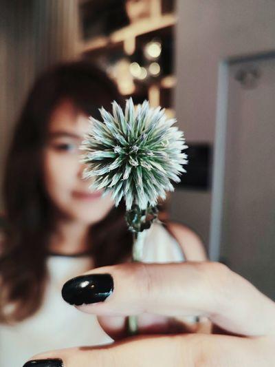 My flower. Flower Young Women Human Hand Beauty Flower Head Beautiful Woman Women Close-up
