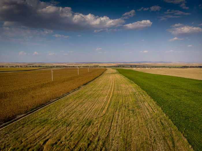 Colored fields go to the horizon. Landscape Environment Land Tranquil Scene Tranquility Scenics - Nature Nature No People Day Plant Outdoors Sky Cloud - Sky Field Beauty In Nature Rural Scene Grass Horizon Agriculture Horizon Over Land Road Fieldscape Fields Clouds Dronephotography