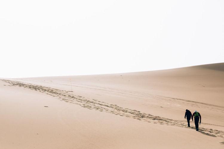 Sand Dune Sand Desert Landscape Peaceful Landscape Nature Desert Beauty Desert Adventure Travel