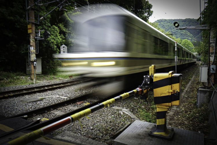 Train Moving In Forest
