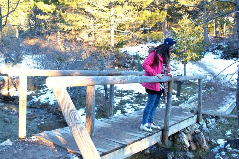 Snow ❄ Mountain Sierra De Las Nieves Malaga SPAIN España Winter LastYear 2015  Trees Countryside
