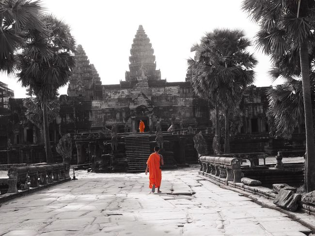 Angkor Angkor Wat Angkorwat Angkor Wat, Cambodia Monk  Monks Walk Monks Orange Color Orange And Black Black Orange Dualtone Travel Photography Cambodia Cambodian Cambodian Girl Color Filter Temple Templephotography Temple Of Heaven Temple - Building
