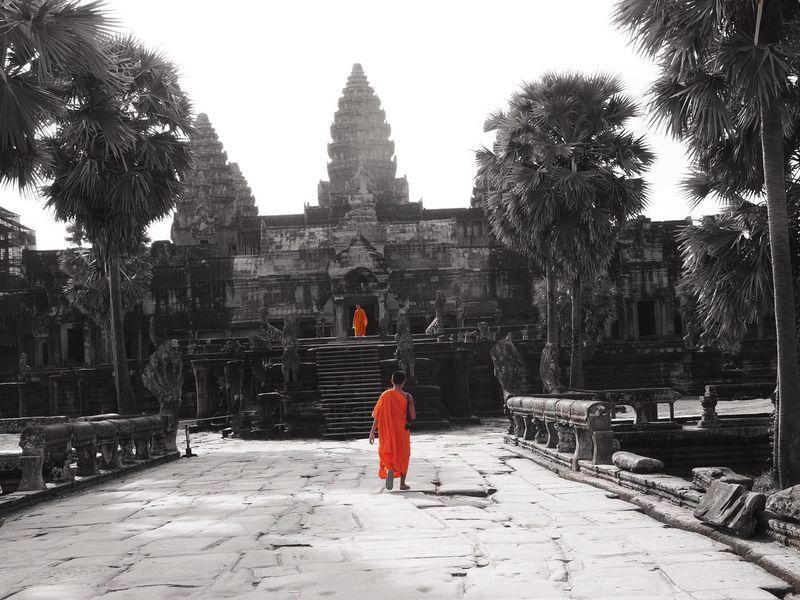 Angkor Angkor Wat Angkorwat Angkor Wat, Cambodia Monk  Monks Walk Monks Orange Color Orange And Black Black Orange Dualtone Travel Photography Cambodia Cambodian Cambodian Girl Color Filter Temple Templephotography Temple Of Heaven Temple - Building