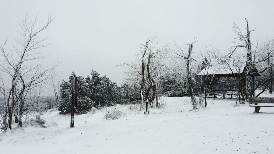 Altenberg Snow ❄ Winter Ski ☃