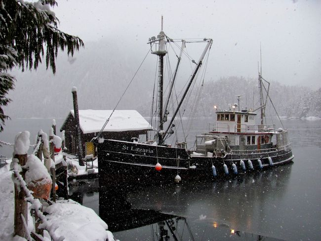 St. Lazaria Baranof Boat Classic Boats Cold Temperature Commercial Dock Fishing Tender Moored Nautical Vessel Reflection Remote Location Snow Wooden Boat