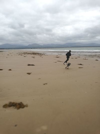 Best Friends Running Having Fun Exercising The Pet Taking The Dog Out Tranquil Deserted Beach Boy And Dog Running On Beach HuaweiP10 Best Friends Family Coastline Sand Beach Dog Water Sky Landscape Cloud - Sky Low Tide Tide Calm