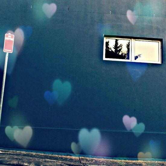 False Color Buildings Walls Signs Reflections Innerwest Enmore Marrickville I love this wall <3