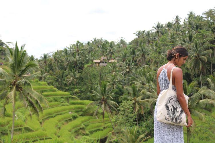 EyeEmNewHere went rice picking🍚🍃 EyeEmNewHere INDONESIA Outdoors Fruit Landscape