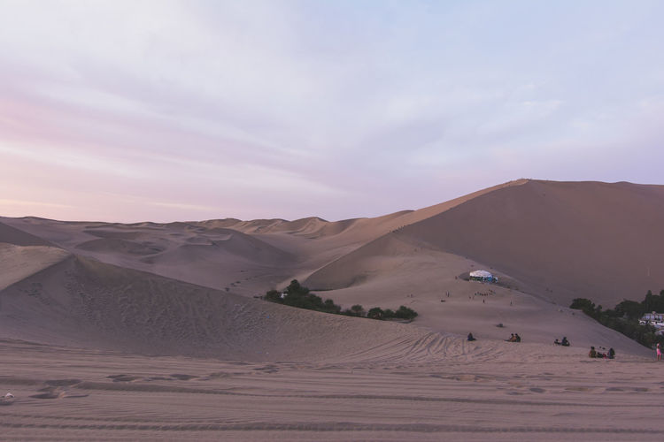 Sand dunes in desert with tourists and plants against sky