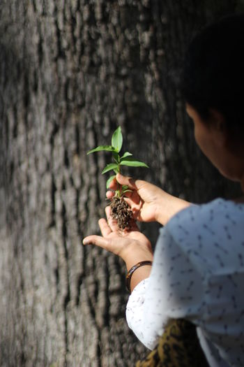 Woman Holding Sapling Against Tree Trunk
