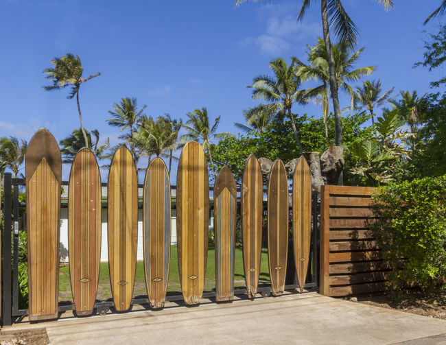 Surfboard gate on the north shore of Oahu Gate Haleiwa  Hawaii Hawaiian Style North Shore Oahu Oahu Surf USA Architecture Blue Blue Sky Day Fence Nature No People Outdoors Palm Tree Privacy Shield Sky Surf Board Surf Culture Surfboards Tree Wood - Material Wooden