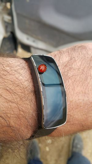 Close-up of ladybug on smart watch worn by man