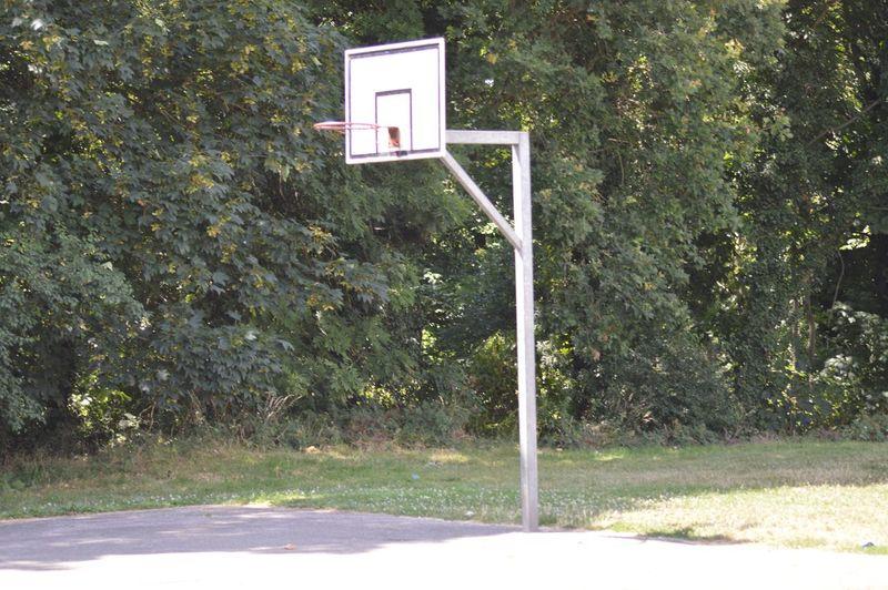 Forgotten Sport