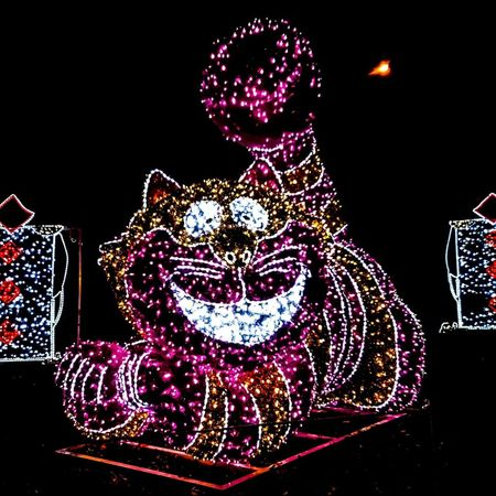 Grin and bare it, a phrase often used.... But why grin and bare it, when you can just as easily grin and share it. Surely you have a great friend who is willing to lend you a friendly ear to chew. Cheshire Cat Cat Illumination Light Up The Night Alice In Wonderland Nightphotography Illuminated Glitter Red Multi Colored Entertainment