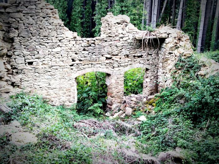 Traces of civilization from the past in the depths of a mountain forest Ruins_photography Ruins Ruins Architecture Italy🇮🇹 Tuscany Medieval Architecture What Remains  Ancient Stone House Stone Wall Doorway Window Architecture Decay Abandoned Abandoned Places Abandoned Buildings Forest WoodLand In The Woods Overgrown Woods Deterioration Interior Building