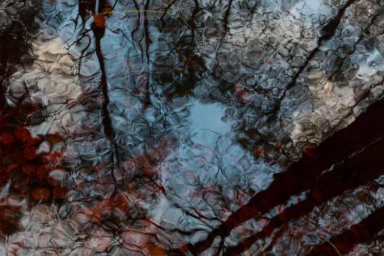 Forest reflection Beauty In Nature Branch Nature No People Non-urban Scene Outdoors Reflection Scenics Sweden Sweden Nature Tranquil Scene Tranquility Tree Water Reflections In The Water