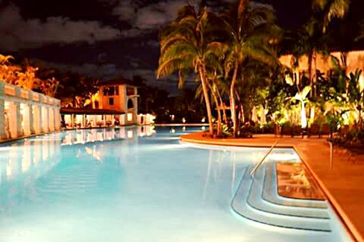 The Biltmorehotel Swimming Pool Night Lights Miami First Eyeem Photo