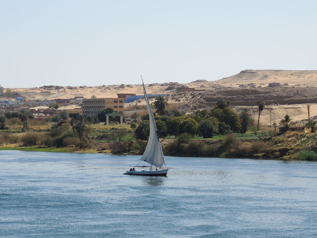 Aswan, Egypt Beauty In Nature Clear Sky Felucca Feluccas On The Nile Landscape Nile River NileRiver Water