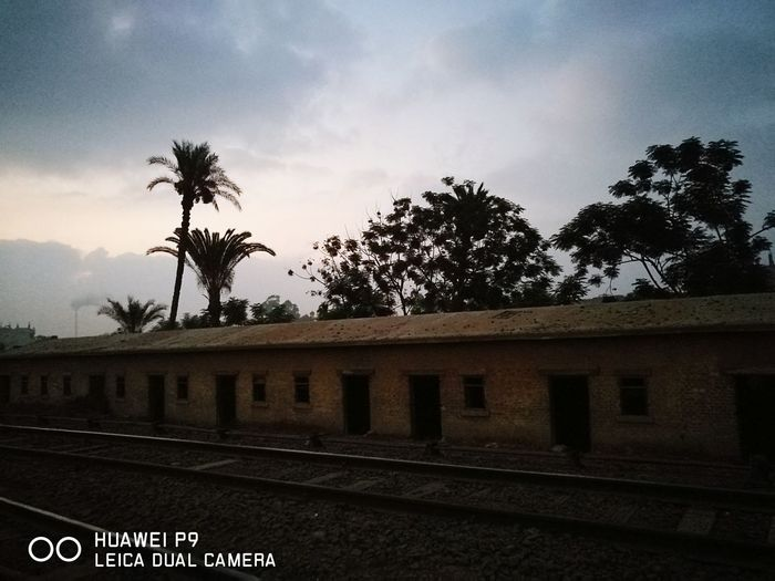 Colour Of Life Sunrise Egypt Love ♥ Medo Egyptian Countryside Daytime Hello World 4:30am 4:30 On A Saturday. Nice Time Good Morning Railway The Countryside Palm Trees Huawei P9 Leica HuaweiP9 Leica Dual Camera EyeEm New Here