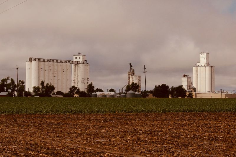 Grain Storage on the Great Plains Grain Processing Grain Silos Factory Fuel And Power Generation Built Structure Industry Sky Building Exterior Environment Architecture Plant Nature No People Cloud - Sky Outdoors Agriculture Land