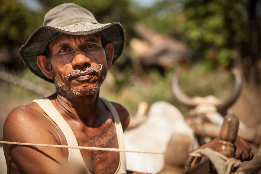 Farmer near Petlad Farmer Moustache India Indian One Man Only Adult One Person Portrait People Headshot Looking At Camera Real People First Eyeem Photo