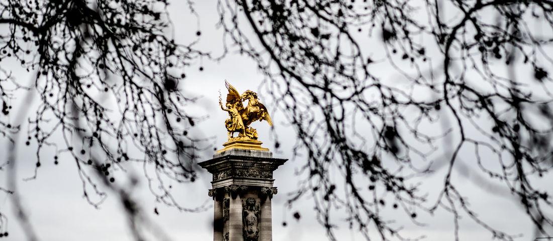 Golden Paris Paris, France  Pont Alexandre III The Week on EyeEm Tourist Attraction  Wintertime Differnet Angle Grey Sky Tourist Destination Trough The Trees