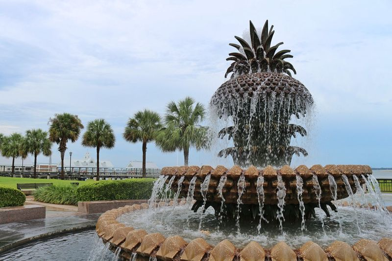 Palm trees on fountain against sky