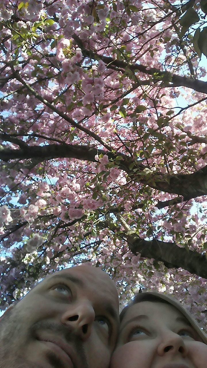 tree, flower, low angle view, blossom, growth, branch, springtime, fragility, beauty in nature, day, one person, nature, freshness, outdoors, smiling, real people, happiness, close-up, young adult, people