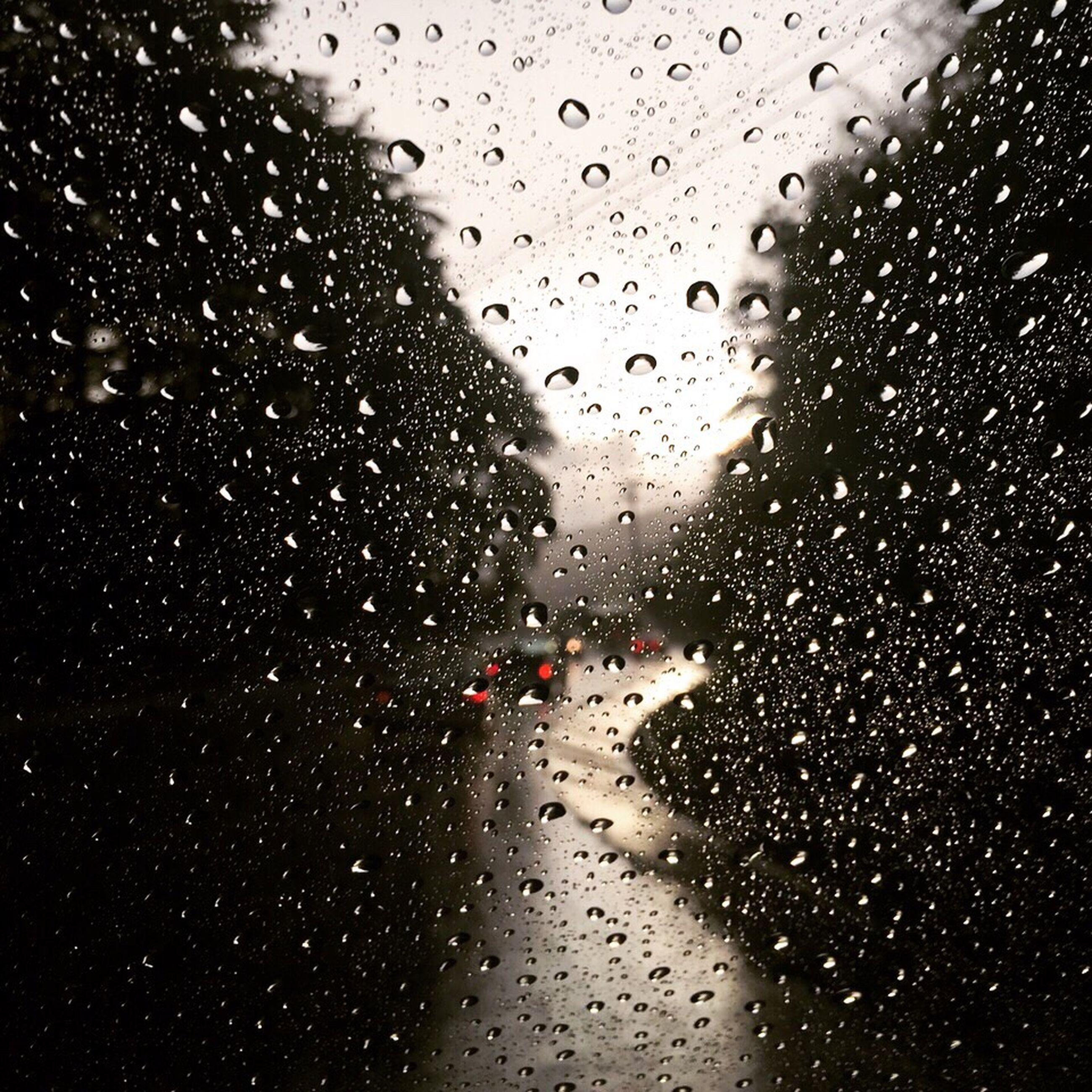 wet, rain, water, drop, season, window, weather, indoors, raindrop, glass - material, transparent, mode of transport, rainy, sky, focus on foreground, nature, full frame, no people, city life