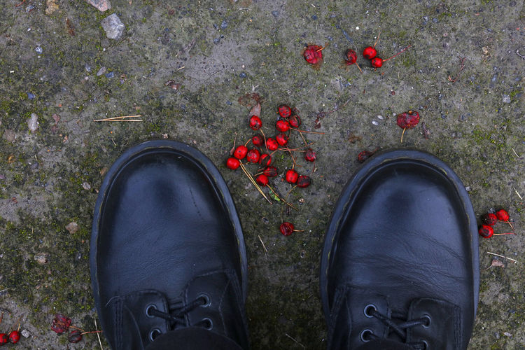 Black boots and red berries, shoe selfie, autumn Autumn Beries Bird's Eye View Black Boots Cold Day Directly Above Foot Photography High Angle View Human Body Part Human Leg Low Section Nature One Person Outdoors Personal Perspective Real People Red Season  Shoe Shoe Selfie Shoes Standing Walking