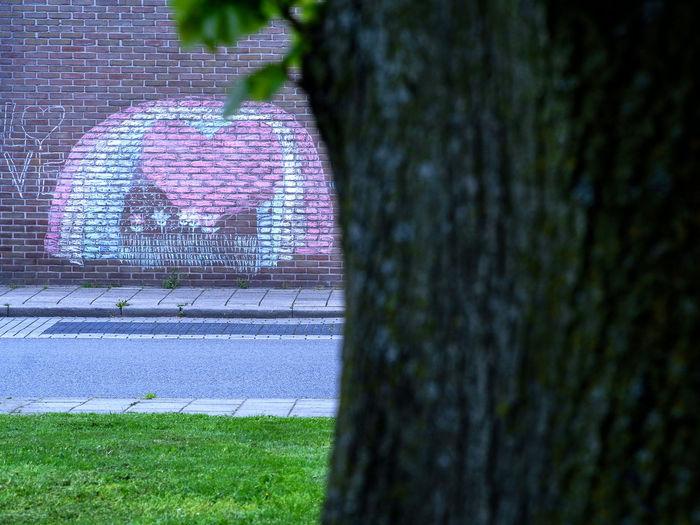 Heart shape on tree trunk in park